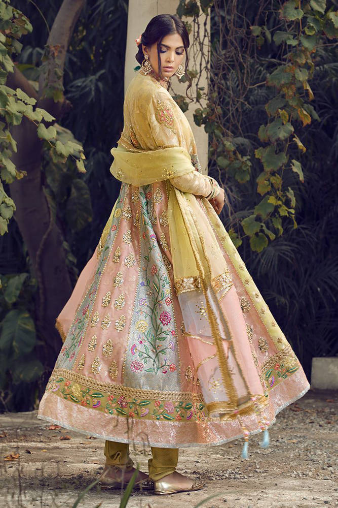 Picture of Pastel peshwas